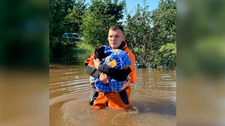 В Воронеже сотрудники МЧС спасли кота из затопленного дома
