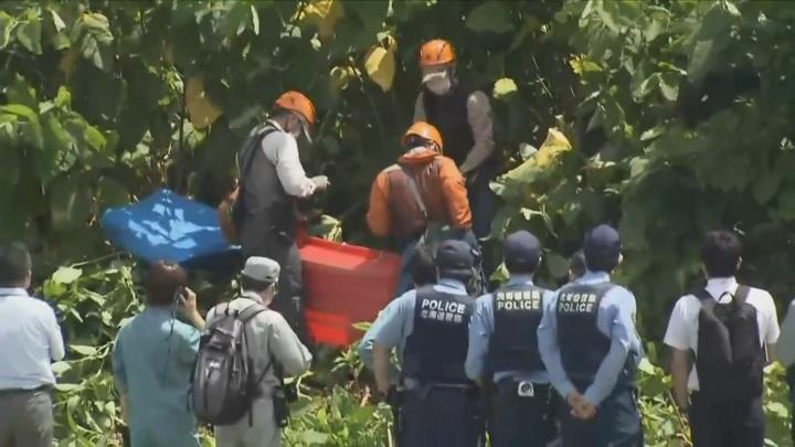 Японские охотники застрелили ранившего четырех человек медведя
