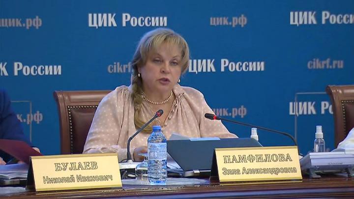 Памфилова высказалась об участии Пивоварова в выборах