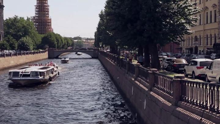 Скверы и сады в центре Петербурга временно закрыли из-за ветра