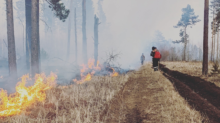 В лесах Иркутской области потушили все пожары