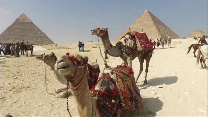 Курорты Египта еще ближе и доступнее: рейсов станет в разы больше