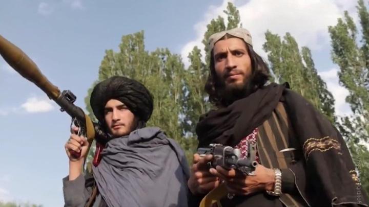 Талибы захватили телецентр в одной из провинций