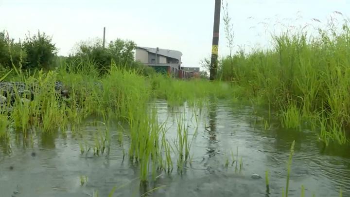 В Хабаровском крае введен режим ЧС из-за подъема уровня Амура