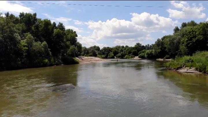 В Рубцовском районе в реке Алей утонул ребенок