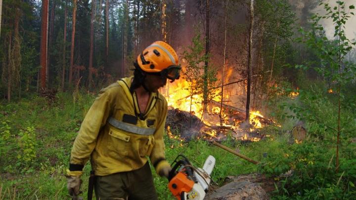 Количество лесных пожаров в Якутии сокращается