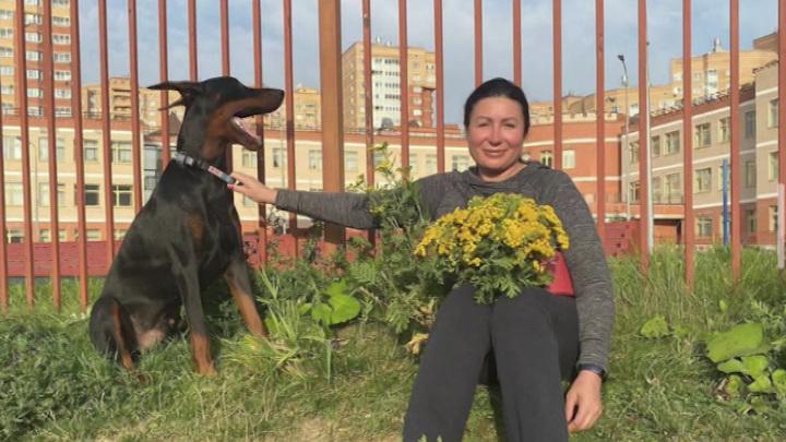 В Видном доберман растерзал несколько собак: теперь жители боятся за детей