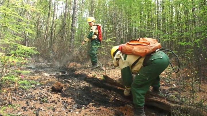 Дым от якутских пожаров достиг Аляски