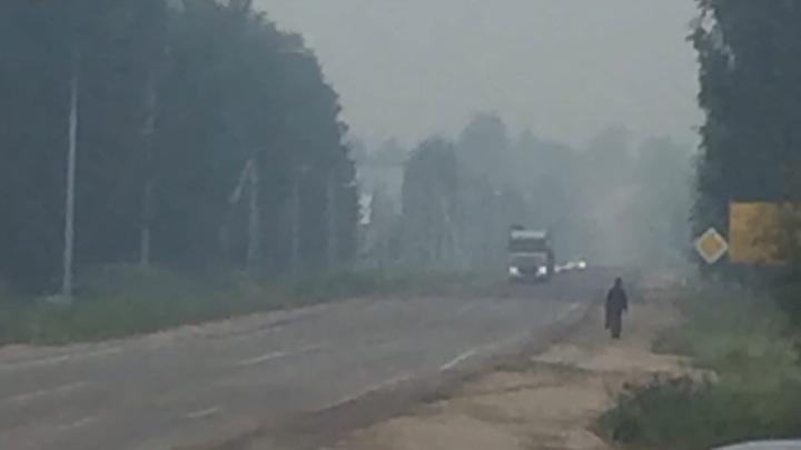 Никольск заволокло дымом из-за лесного пожара в Костромской области