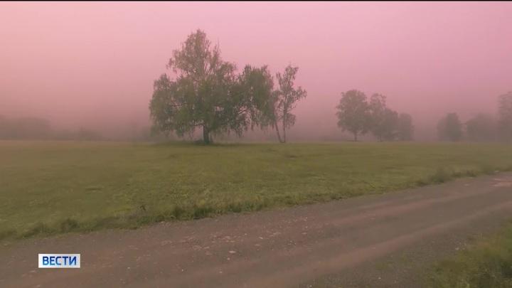 Жителей Башкирии предупредили о шквалистом ветре и тумане