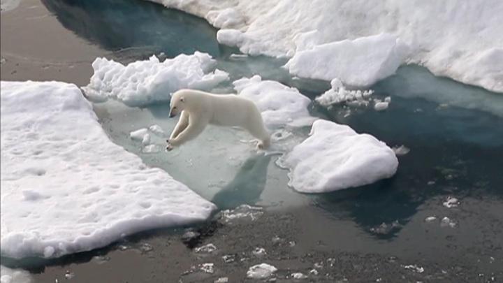 Климатические взрывы: изменения планетарного масштаба