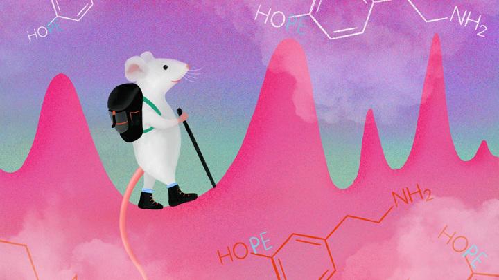 Спонтанные выбросы дофамина могут служить мотивацией к действию без явных внешних стимулов.