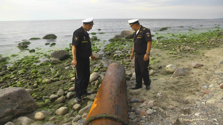Торпеду времен Великой Отечественной нашли на побережье Балтийского моря
