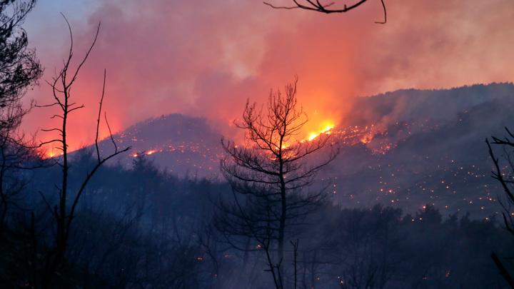 Лесные пожары в Турции не напугали российских туристов