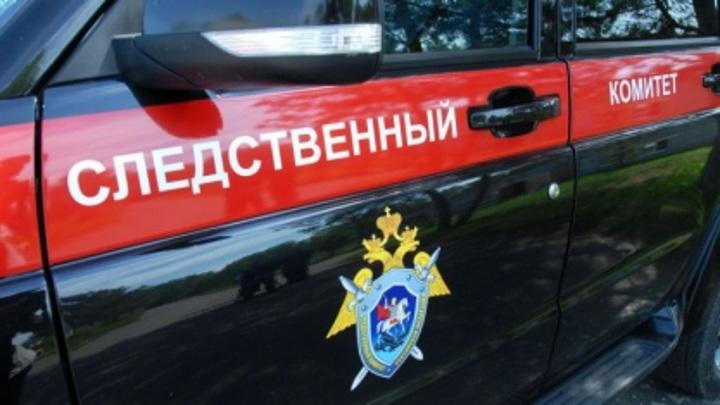 В Тверской области с эстакады упала 16-летняя девушка