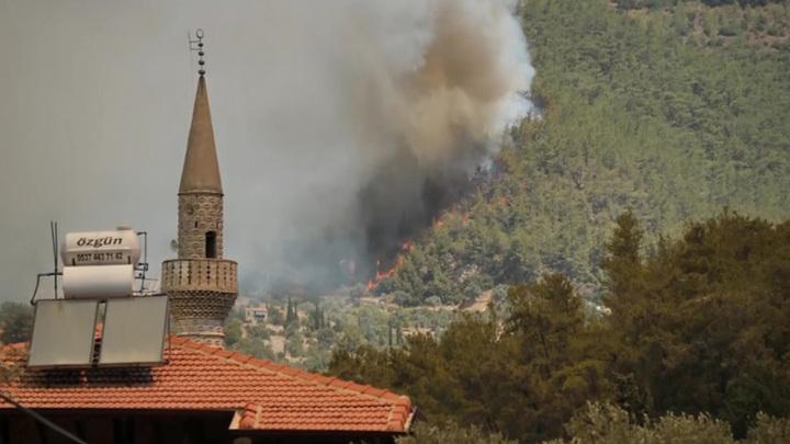 Эрдоган поблагодарил Путина и лидеров других стран за помощь в борьбе с лесными пожарами