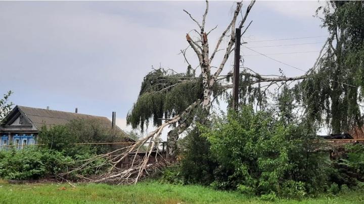 Из-за урагана в Чувашии без света остались 2763 дома в 33 селах