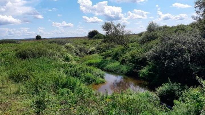 2 километра калужской реки Сечны расчистят до конца 2022 года