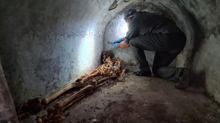 Погребальная камера была герметично запечатана все эти годы, что обеспечило исключительную сохранность останков.