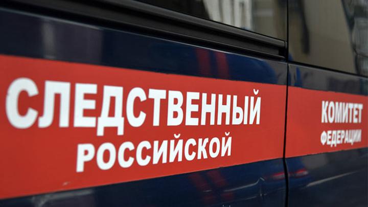 СКР возбудил дело о халатности после убийства девочки в Вологде