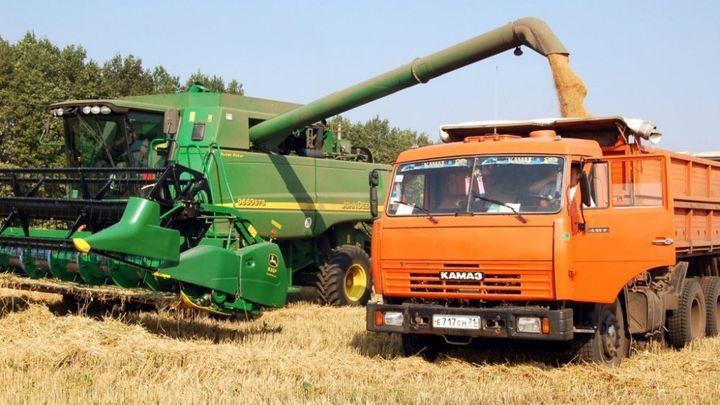 В Тульской области вырос экспорт продукции АПК