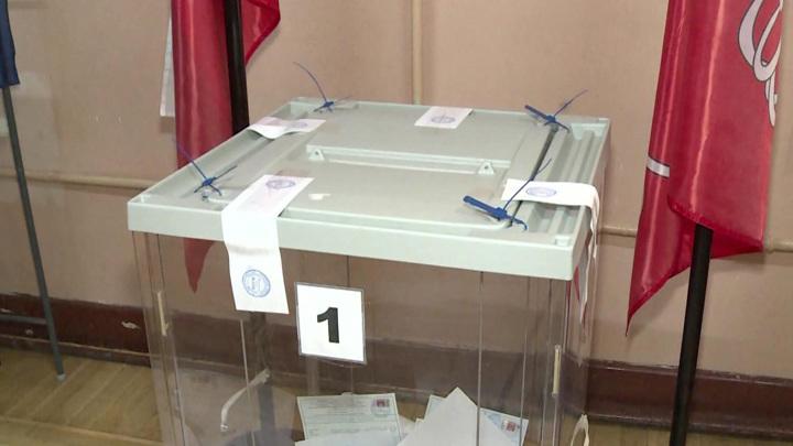 Памфилова сообщила о вбросах на выборах в шести регионах