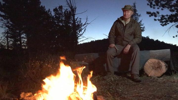 Медведь забрел в лагерь, где отдыхал президент