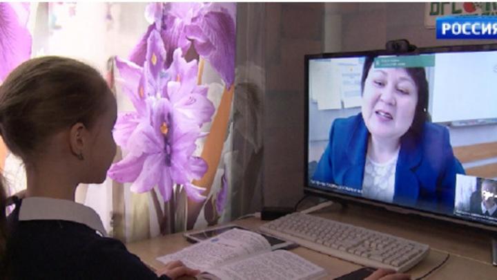 Школы Нижегородской области пока не будут переводить на удаленку