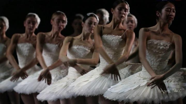 """В Петербурге появится ещё одно """"Лебединое озеро"""", а в Шведской опере запоют по-русски"""