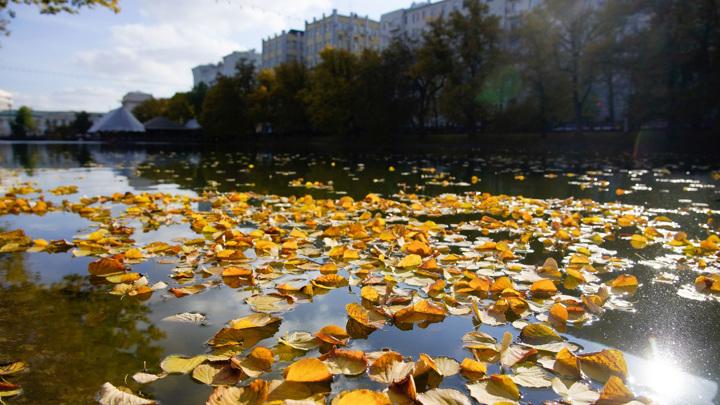 В Москву пришло похолодание с дождями