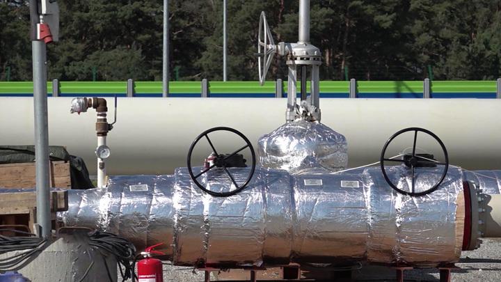 В ФРГ озвучили причины скачков цен на газ и нашли решение