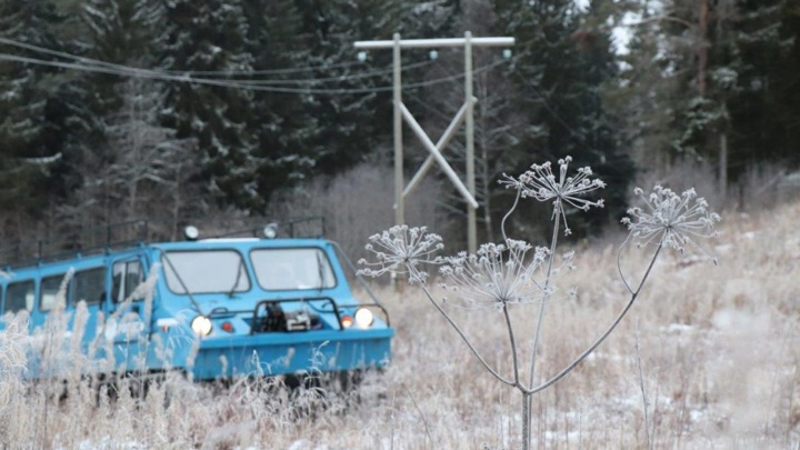 Циклон может оставить жителей Карелии без электричества