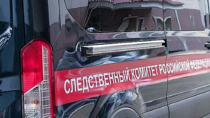 Житель Ростова-на-Дону задержан по подозрению в жестоком убийстве внука