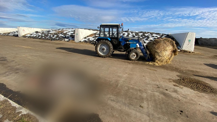 Рабочий насмерть сбил женщину на тракторе в Татарстане