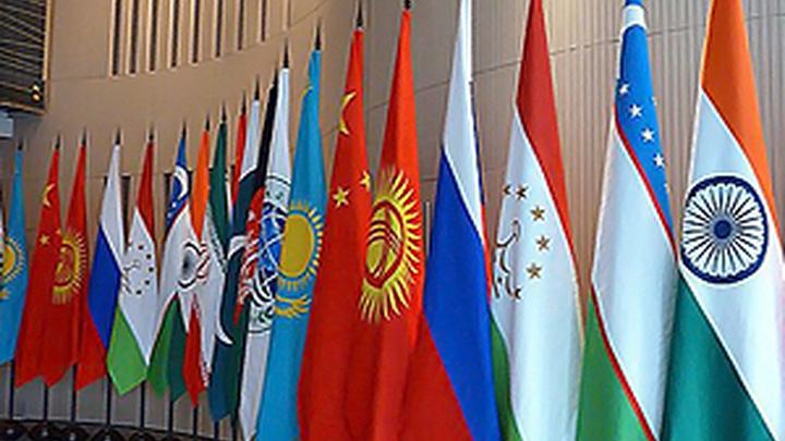 Россия готова делиться в ШОС наработками в цифровой сфере