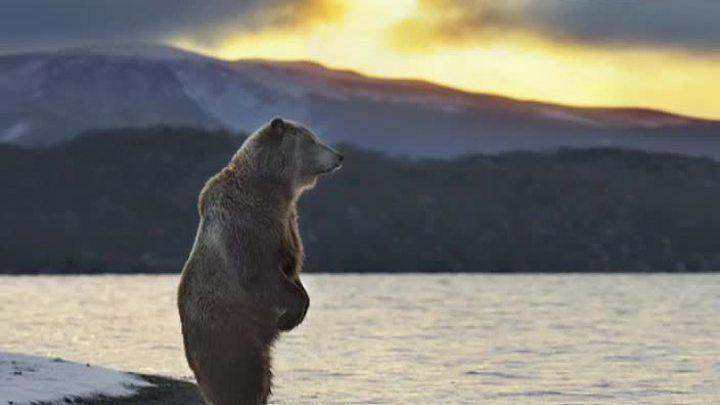 РГО расскажет об Арктике и поделится секретами фотосъемки